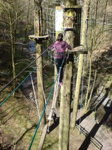 High up in the trees at Go Ape