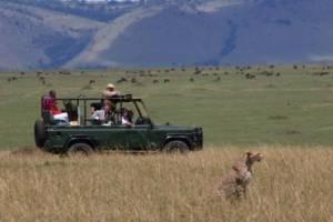 safari landrover