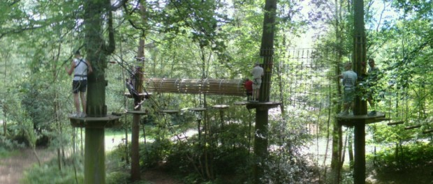 Panorama of Go Ape Course