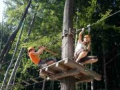 Tree top ropes course