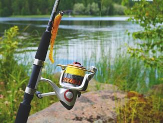 Freshwater fishing rod next to pond