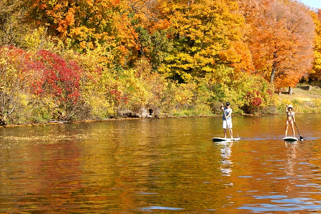 Couple on stand up paddle boards on a lake in the Fall