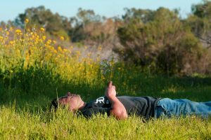 Why exercise when you can enjoy the outdoors lying down