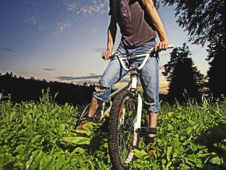 BMX bike on grass