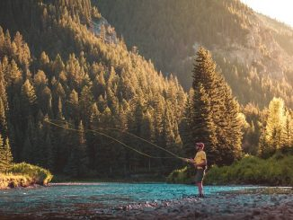 Man standing in a river fly fishing