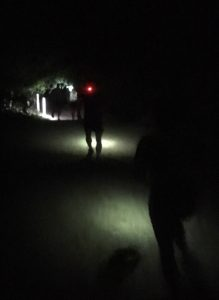 Trail running head torch for night running in the woods