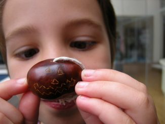 making your conker hard