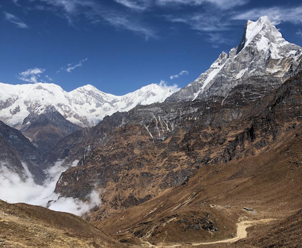 Wellness treks in the Himalayas